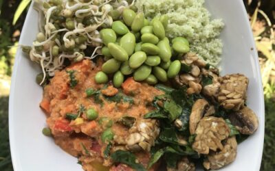 Budha bowl – paradajková zmes skarfiolovou ryžou, tempehom, fazulkami mungo a edamame (vegan)