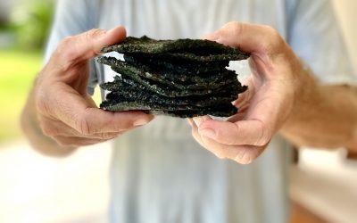 Spirulínové raw krekry